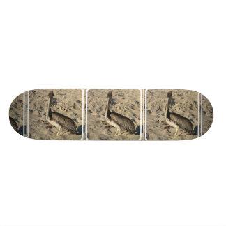 undefined skate board