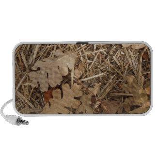 Under a California Valley Oak Tree iPod Speakers