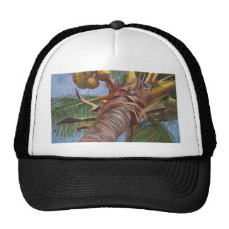 Under the Coconut Tree Mesh Hats