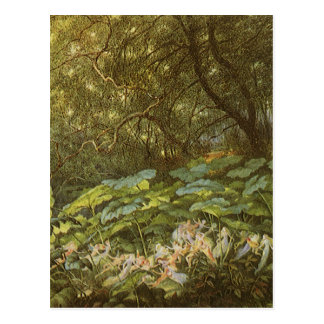 Under the Dock Leaves by Doyle Victorian Fairies Postcard