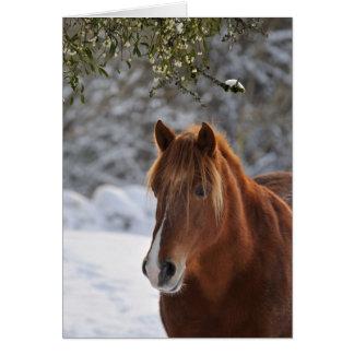 Under the mistletoe horse Xmas card