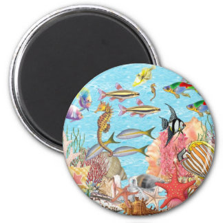 Under the sea magnet