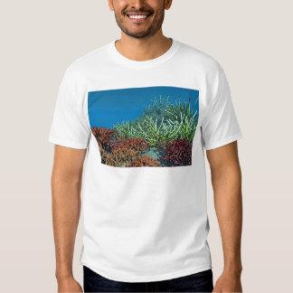 Under the sea shirt