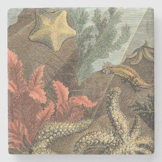 Under the Sea Stone Coaster