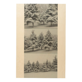 Under the snow. Spruce. Approximation Wood Wall Decor