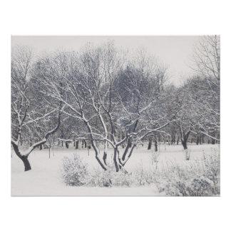 Under the snow. Trees Photo Print