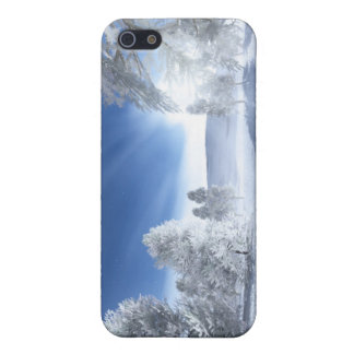 Under the Winter Sun iPhone 5 Cases