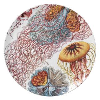 Undersea Wonders Plate