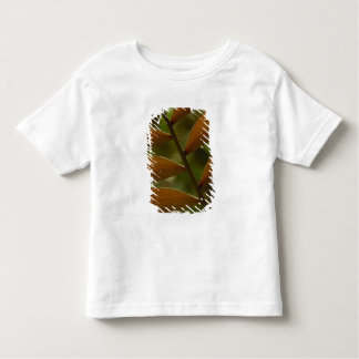 Understory palm detail. Mindo Cloud Forest. Toddler T-Shirt
