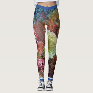 underwater 2 leggings
