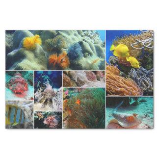 Underwater 36 tissue paper
