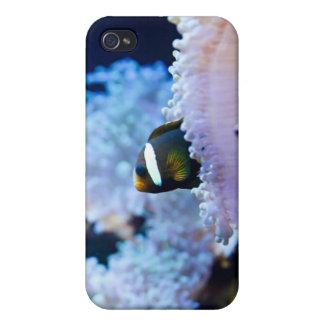 Underwater background iPhone 4 case