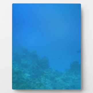 Underwater Background Scene Plaque