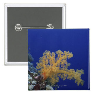 Underwater Coral Pinback Buttons