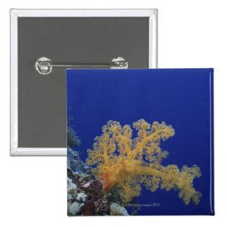 Underwater Coral 15 Cm Square Badge