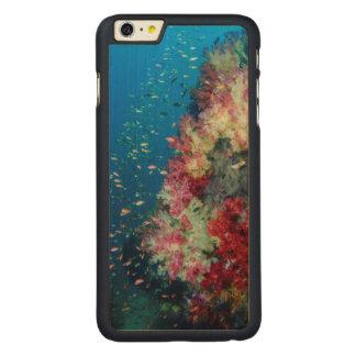 Underwater coral reef, Indonesia Carved® Maple iPhone 6 Plus Case