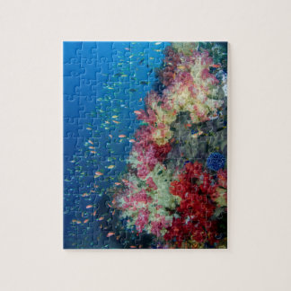 Underwater coral reef, Indonesia Jigsaw Puzzle