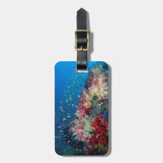 Underwater coral reef, Indonesia Luggage Tag