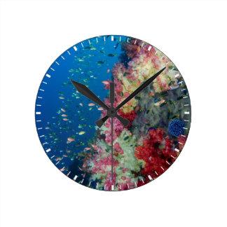 Underwater coral reef, Indonesia Round Clock