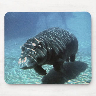 Underwater exploration mouse pad