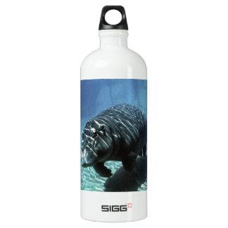 Underwater exploration SIGG traveller 1.0L water bottle