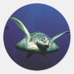 Underwater Flight Round Stickers
