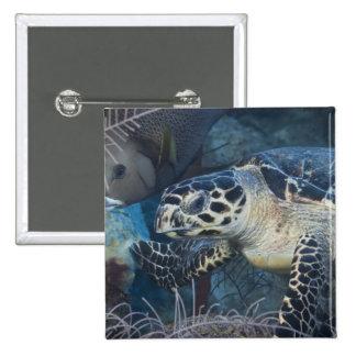 Underwater Life: A Hawksbill Sea Turtle 15 Cm Square Badge