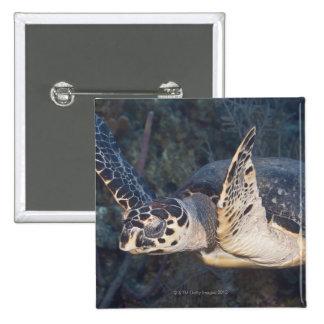 Underwater Life: A Hawksbill Sea Turtle 2 15 Cm Square Badge