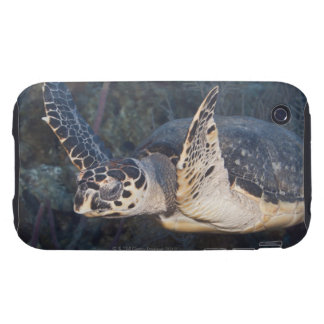 Underwater Life: A Hawksbill Sea Turtle 2 Tough iPhone 3 Covers