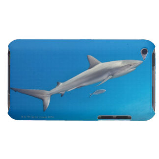 Underwater life: Carcharhinus perezi swimming in Case-Mate iPod Touch Case