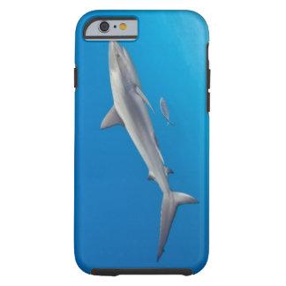 Underwater life: Carcharhinus perezi swimming in Tough iPhone 6 Case