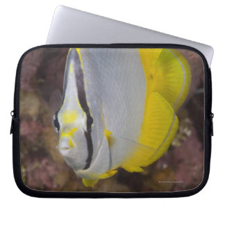 Underwater Life, FISH:  A colorful tropical Laptop Sleeve