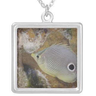 Underwater Life, FISH: A Foureye Butterflyfish Silver Plated Necklace