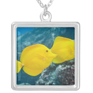 Underwater life; FISH: A Pair of Yellow Tangs Silver Plated Necklace