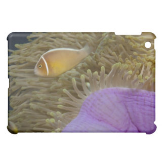Underwater LIfe; FISH: Clownfish (Pink Cover For The iPad Mini
