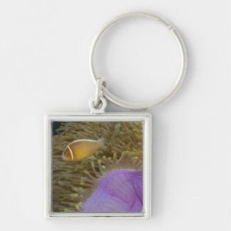 Underwater LIfe; FISH: Clownfish (Pink Silver-Colored Square Key Ring