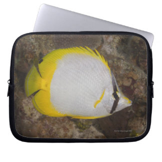 Underwater Life, FISH: Colorful Spotfin Laptop Sleeve