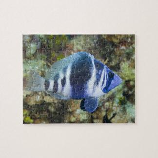 Underwater Life, FISH:  Indigo Hamlet Jigsaw Puzzle