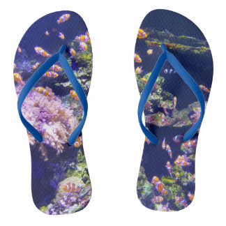 Underwater Orange Clown Fish Around Coral Flip Flops
