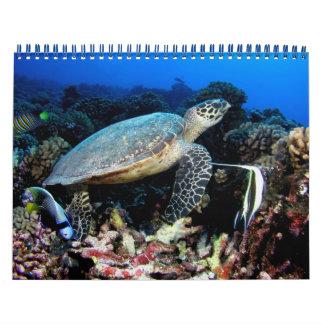 Underwater Photos 2015 Calendar