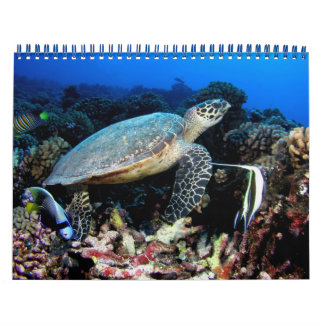 Underwater Photos 2015 Wall Calendars