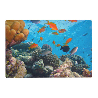 Underwater Scene Laminated Place Mat