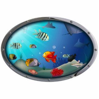 Underwater scene photo cutouts