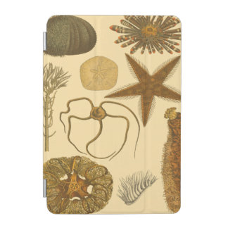 Underwater Sea Creatures iPad Mini Cover