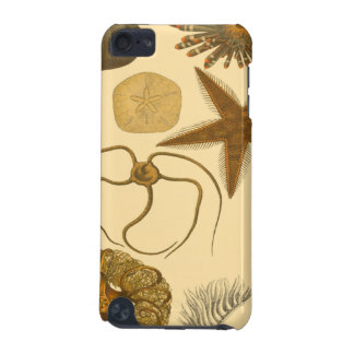 Underwater Sea Creatures iPod Touch 5G Cover