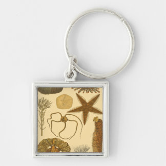 Underwater Sea Creatures Silver-Colored Square Key Ring