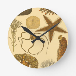 Underwater Sea Creatures Wall Clock