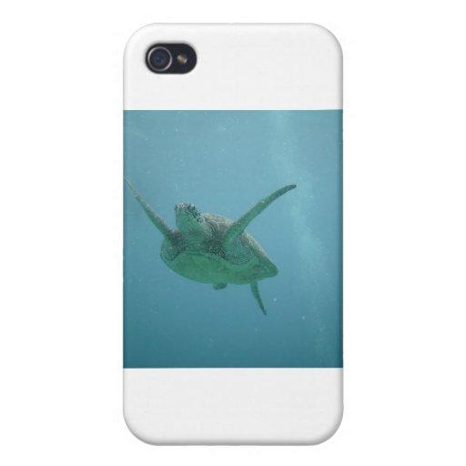 Underwater Sea Turtle iPhone 4/4S Cover