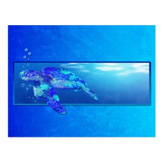 Underwater Sea Turtle Postcard