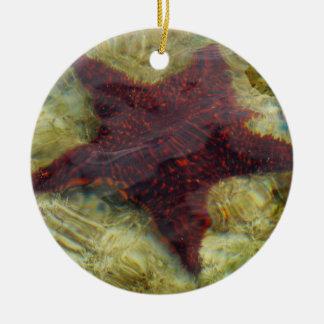 Underwater Starfish Tropical Animal Photography Round Ceramic Decoration